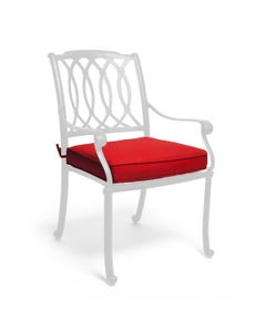 Dining Cushion in Spectrum Crimson